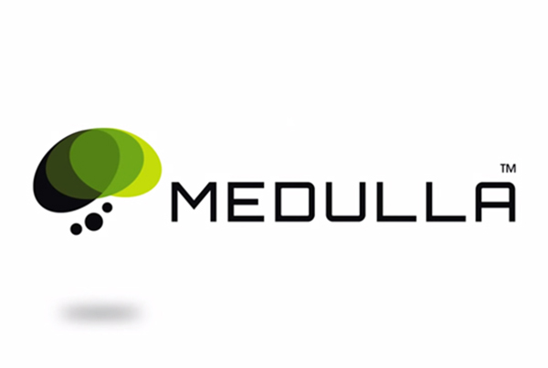 We Are Medulla